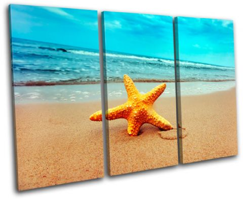 Beach Starfish Seascape Bathroom - 13-2223(00B)-TR32-LO